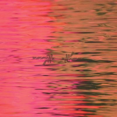 Silverstein - Dead Reflection