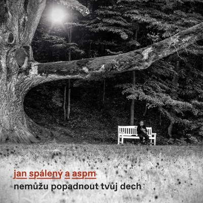 Jan Spálený & ASPM - Nemůžu popadnout tvůj dech CD