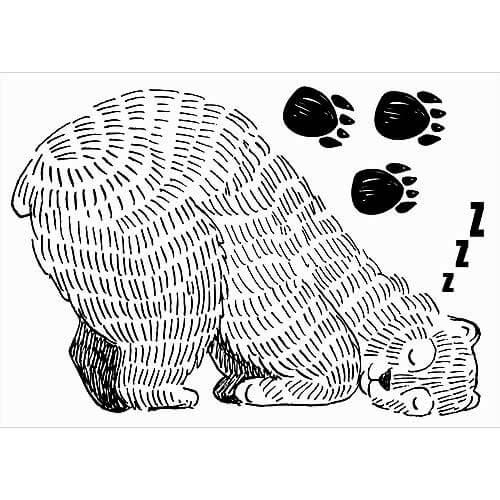 Samolepka na zeď pro děti A2 - Spící medvěd