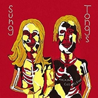 Animal Collective - Sung Tongs