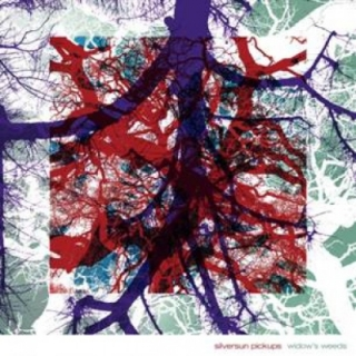 Silversun Pickups - Widow's Weeds CD