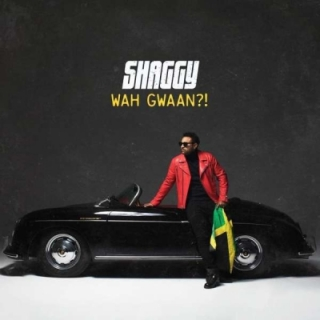 Shaggy - Wah Gwaan?! CD